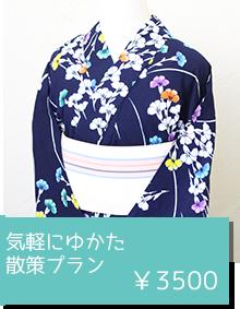 気軽にゆかた散策プラン ¥3500